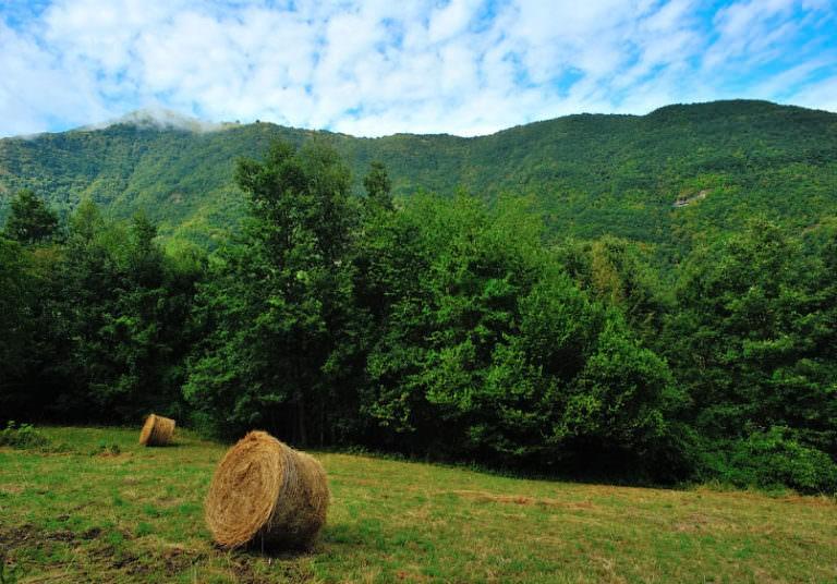 Monte Alfeo visto da Barchi